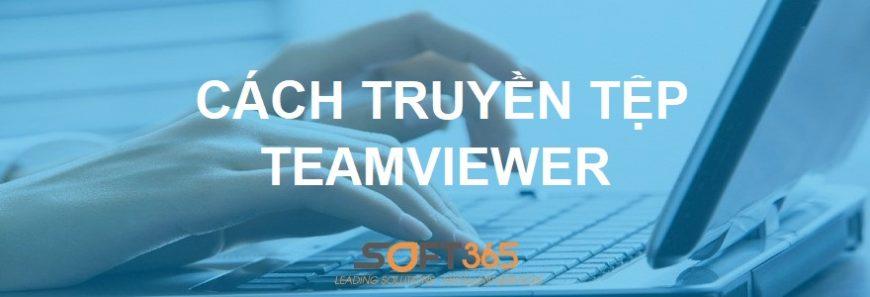 giải pháp teamviewer